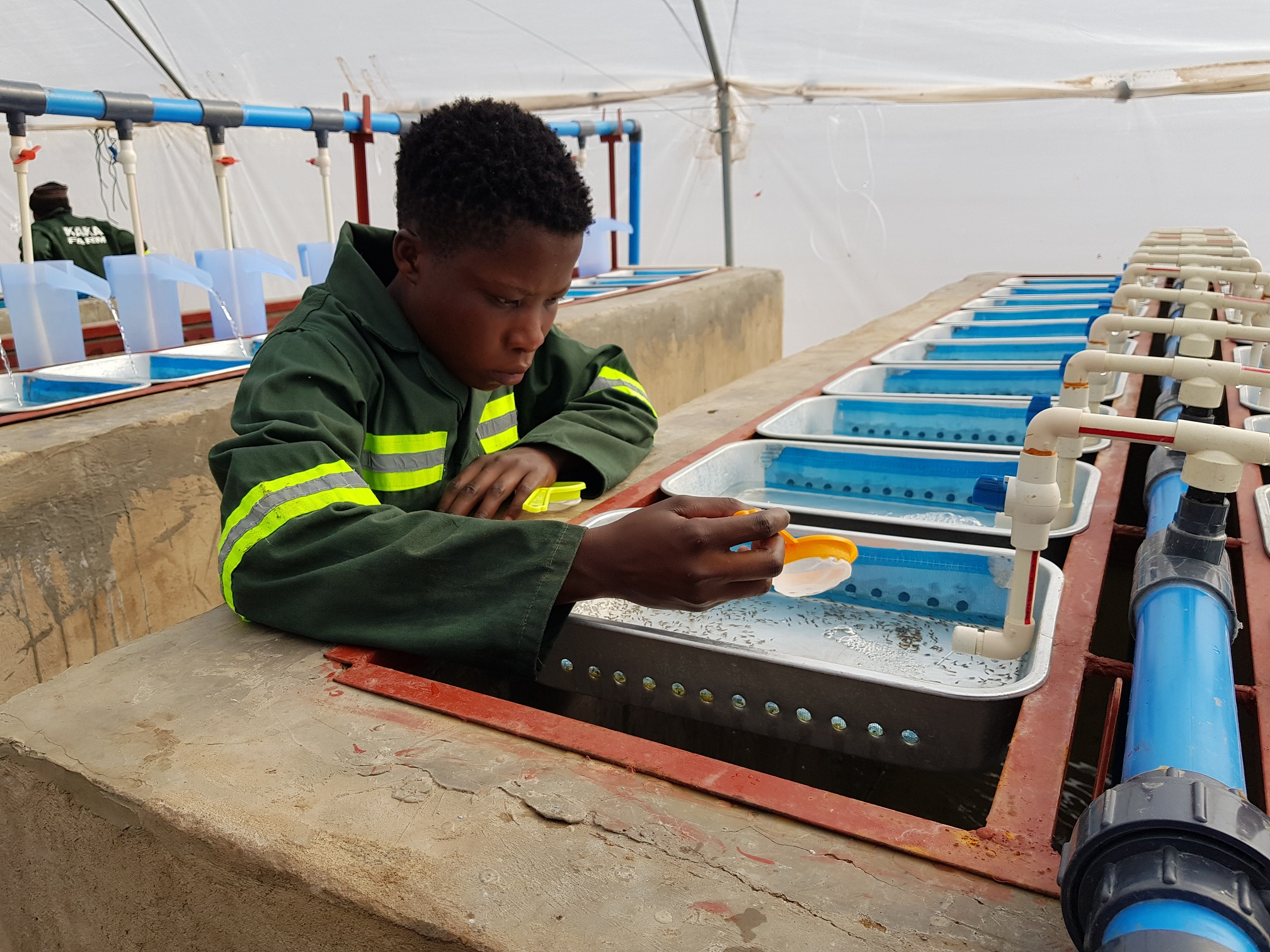 Operations at Palabana Fish Nursery & Hatchery developed under the Aquaculture Seed Fund